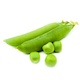 Горошек зелёный стручки