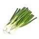 Лук-шалот зелень